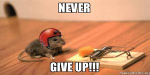 success never give up